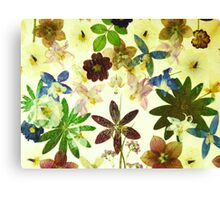 Floral May Canvas Print