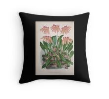 Iconagraphy of Orchids Iconographie des Orchidées Jean Jules Linden V4 1888 0094 Throw Pillow