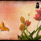 Tip Toe Through the Tulips... by sunshine0