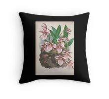 Iconagraphy of Orchids Iconographie des Orchidées Jean Jules Linden V4 1888 0150 Throw Pillow