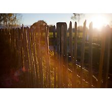 Fencing in sunlight Photographic Print