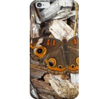 A Common Buckeye iPhone Case/Skin