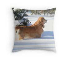 What On Earth Does He See?! FEATURED PHOTO Throw Pillow