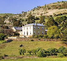Pooley's Wine - Richmond -Tasmania by Anthony Davey