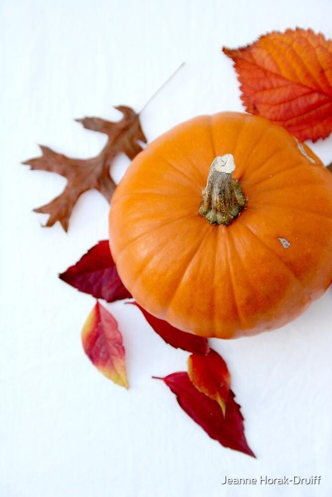 Pumpkin by Jeanne Horak-Druiff