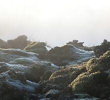 Light over Frosty Steamy Moss & Rocks by Drakael