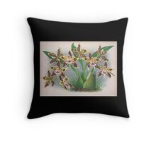Iconagraphy of Orchids Iconographie des Orchidées Jean Jules Linden V4 1888 0170 Throw Pillow
