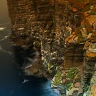 Marwick Head, Orkney, Scotland by Gabor Pozsgai