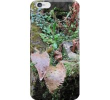 Still life - Nature doesn't forget iPhone Case/Skin