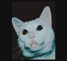 Pink kitty  by ♥⊱ B. Randi Bailey