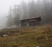 ~ la cascina in montagna ~ by Adriana Glackin