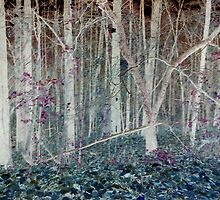 Inverted Late Fall Woodlands by Charldia