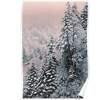 TREES,WINTER Poster