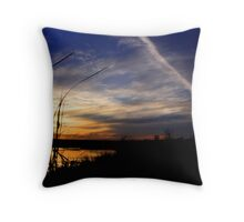 Fall Tails Throw Pillow