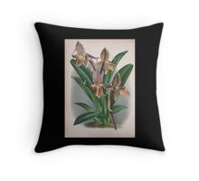 Iconagraphy of Orchids Iconographie des Orchidées Jean Jules Linden V4 1888 0178 Throw Pillow