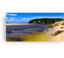 Wilson Inlet - Sand Bar Open Canvas Print