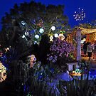 The Christmas Lights Winner For 2009. Brisbane, Queensland, Australia. by Ralph de Zilva
