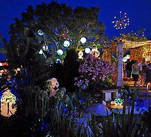 The Christmas Lights Winner For 2009. Brisbane, Queensland, Australia. by Ralph de Zilva