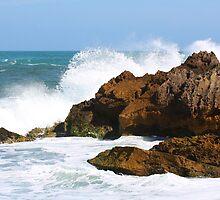Breaking Waves by Sophia Phoenix