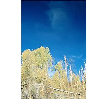 Bluest Sky Photographic Print