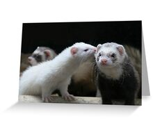 Chinese whispers..... Greeting Card