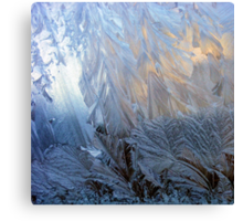 Iced Glass Canvas Print