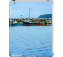 Feltzen South  iPad Case/Skin