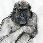 Sad Gorilla by WoolleyWorld