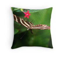 In Balance Zebra Longwing - Heliconius charithonia Throw Pillow
