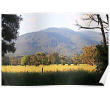 View from Yarra Junction Poster