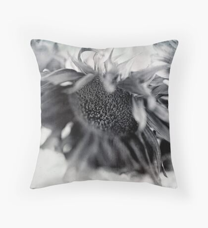 Sunny Details Throw Pillow