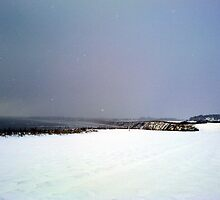 Break in the blizzard by Merice Ewart Marshall - LFA