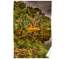 Reflecting Time - Wonga Wetlands, Albury , NSW Australia - The HDR Experience Poster