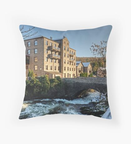 A Year in the Life....... Throw Pillow