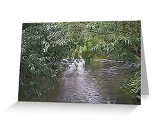 Willow over water Greeting Card