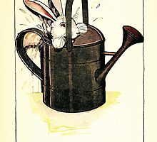 The Tale of Peter Rabbitt Beatrix Potter 1916 0039 Jumped in a Can by wetdryvac