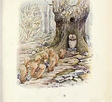 The Tale of Squirrel Nutkin Beatrix Potter 1903 0025 Permission Line Owl Island by wetdryvac