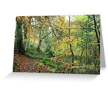Snaiton Forest - Falling Foss North Yorkshire Greeting Card
