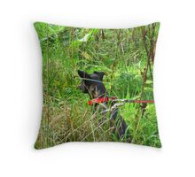 The Frozen Tarn ~ Completely Cunsey, Cumbria Throw Pillow