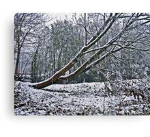 The Coldest Winter #4 Canvas Print