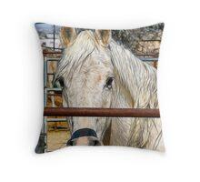 Horse Portrait - Sketch Effect Throw Pillow