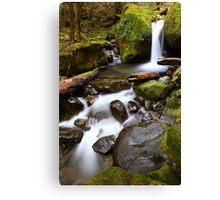"""Green Cascades"" Canvas Print"