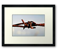 Rusty wire Framed Print