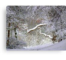 A Glimpse of Narnia Canvas Print