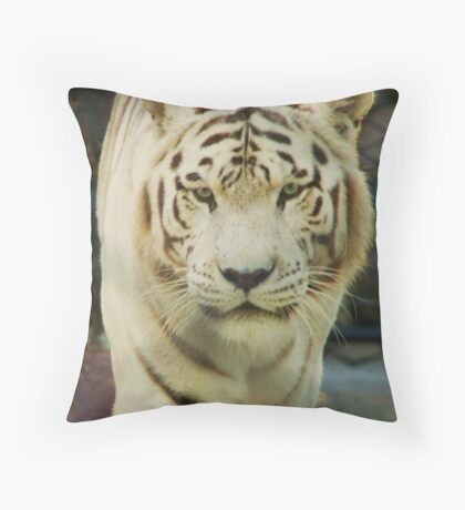 """""""Pacing the Cage"""" Throw Pillow"""