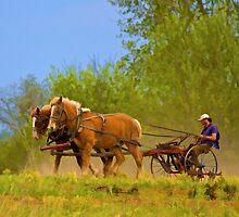 Farming Old School by RandiScott