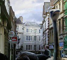 Barnstaple High Street - (A Shopping Spree!) by Simon Groves