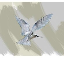 Sketched Bird Photographic Print