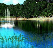 Relaxing Water by Jill Bernier