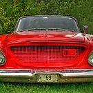 62 Chrysler Newport by Alana Ranney